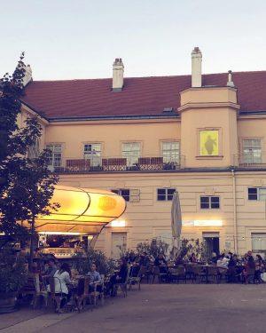 lovely place @bioskvienna . . . #visitMQ #myMQ #placetobe #art #architecture #creativespace #hotspot #Vienna BIOSK