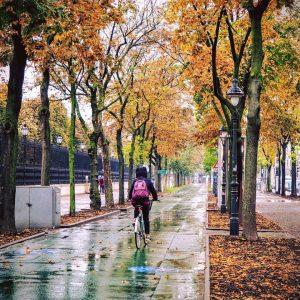 Guten Morgen an diesem falschen Freitag! 😊🚲🍁 #fahrradwien #igersvienna #warumfährstdunicht #wienliebe Vienna