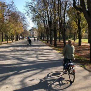 Best way to see Vienna is on a bike. I have been here ...