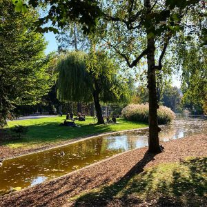 Colors of Stadtpark 🍂🍁☀️ . . . . . . . . . .' . .  #goldenoctober #vienna_city #stadtparkwien #wien #autumninvienna