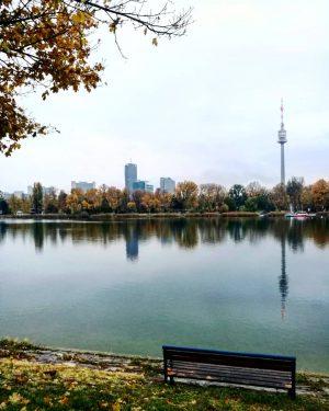 Bankerl mit Aussicht. Obere Alte Donau. Schönen Sonntag und genießt die gewonnenen 60 Minuten 😉 . ....