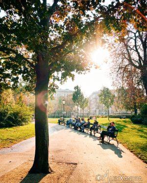Wish you a beautiful day😎 #burggarten . . #wien #vienna #vienna_city #viennanow #viennagram #vienna_austria #igersvienna #igersaustria #vienna_online...