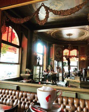 Der fliegende Melange im Cafe Savoy😍 #savoyistanders #savoyisdifferent . . . . . . . . ....