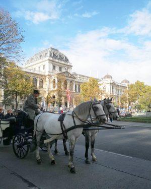 🇦🇹🍾 Aujourd'hui, c'est la fête nationale en Autriche. Et on en profite pour prendre un bain de...