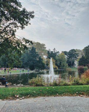 So gefällt er uns, der Herbst in Wien. 🍂💚 . . . #aufderalist #localhero #bestofaustria #beinsidevienna #wien...