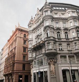 Probably my favourite city ♥️ . . . . #vienna #wien #austria #österreich #kohlmarkt #graben #buildings #architecture...