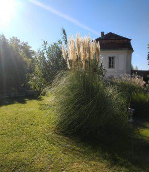 #wien #österreich #vienna #austria #viennanow #nature #city #botanical_gargen #belvedere #autumn #enjoyaustria #vienna_austria🇦🇹 #october #вена_австрия