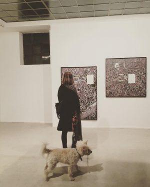 Lamm/Wolf on #artsy #tour Wieden