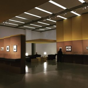 This exhibition was very beautiful with depth, individual space, use of space and colour, the lighting, height...
