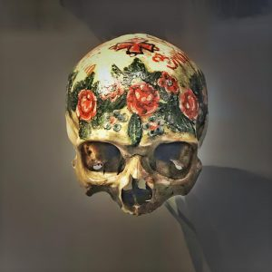 Painted skull #iphoneography #vienna #austria #museum #skull #paintedskull