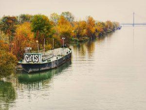 Hello November mood 🌫️ . . . #autumncolours #autumn #danube #river #water #reflection ...