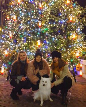 Our Christmas gang 🎄#dreamteam and #kenzo 🐶💕