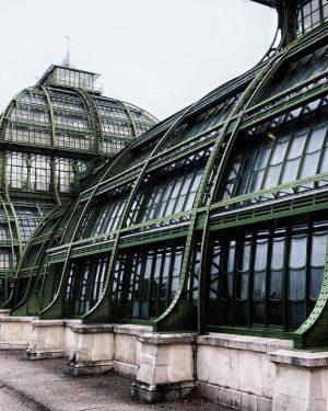 . . . . . . #palmhouse #vienna #exotichouse #canopy #glass #architecture #metalandglass