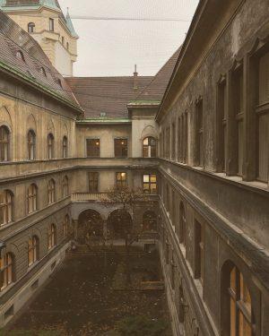 #wien #vienna #viyana #winter #herbst #🍂