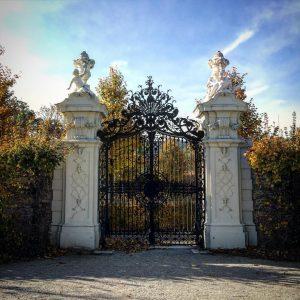 Dettagli #castellobelvedere #schlossbelvedere #schloss #belvedere #oberesbelvedere #unteresbelvedere #wien #vienna #austria #palazzo #castello #castle #art #arte #museum #architecture...