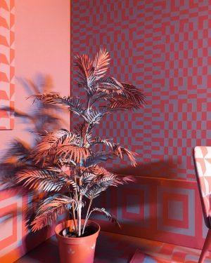 #sagmeisterwalshbeauty #vienna #makvienna #sagmeister #mak #expo #beauty #colorroom #backhausen #livingroom Sagmeister & Walsh