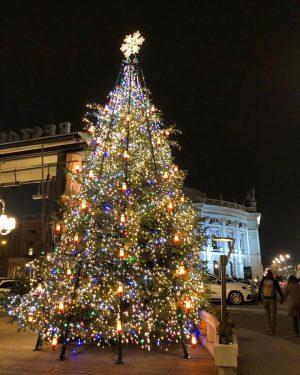#vienna #венаавстрия #рождествовевропе #рождественскийвенок #настроение #скороновыйгод #елка