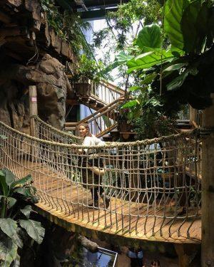 🐒 Haus des Meeres Zoo