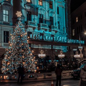 It's beginning to look a lot like Christmas 🎄 #vienna #wien #austria #rathaus #landtmann #christmas #christmastree #night...