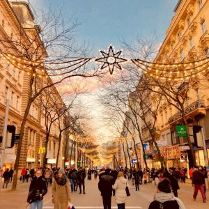 Christmas is coming 🎄 Austria Vienna City