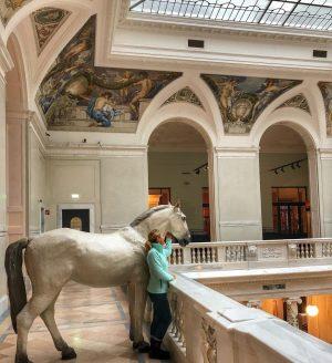 Atımla bir gün müzedeyken 😂🐎 #travel #vienna #austria #horse #museum #weltmuseumwien