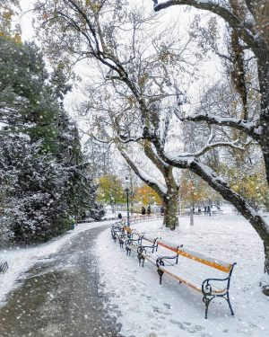 Good morning 😉 #stadtpark #snow #winter . . #wien #vienna #vienna_city #viennanow #viennagram #vienna_austria #igersvienna #igersaustria #vienna_online...