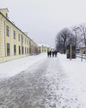 쉔부른 가는길 #험난 #비엔나#쉔부른궁전 #눈길 #다들즐겁다 #여행스타그램 #유럽여행 #instatravel #travelgram #voyage #walkingaround #promenade #neige #snow #vienna #wien...