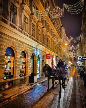 Have a wonderful evening 😊 #habsburggasse . . #wien #vienna #vienna_city #viennanow #viennagram #vienna_austria #igersvienna #igersaustria #vienna_online...