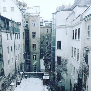 В Вене выпал снег🤗 #вена #отпуск