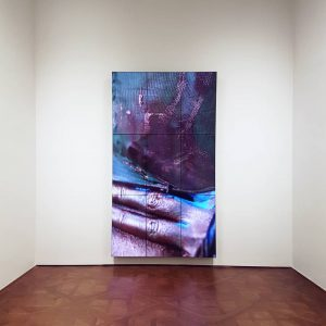 Video installation by Donna Huanca at the @belvederemuseum