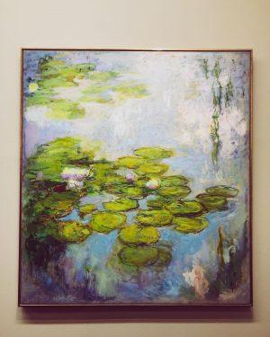 Monet 💚 . . . . . . . . . . . #travelbug #traveller #travelholic #travel...