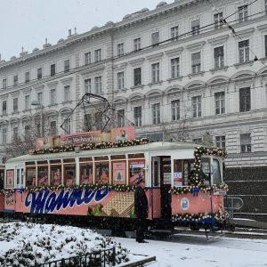 눈과 함께 오스트리아 비엔나 도착💖 #오스트리아#비엔나#비엔나여행#austria#vienna