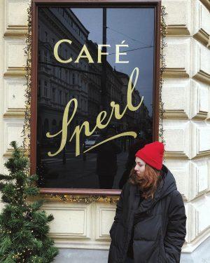 Венские кафе покорили нас невероятно вкусной едой и своей атмосферой. Самый вкусный шницель ...
