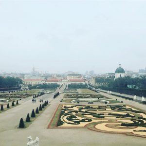 Vienna is gorgeous even when it's grey...