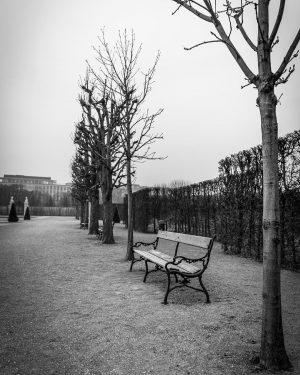 #belvedere #schlossbelvedere #wien #vienna #igersvienna #igerswien #wienliebe #viennaaustria #vienna_city #vienna_austria #viennagram #visitaustria #viennanow #running #run #laufen #laufrunde...