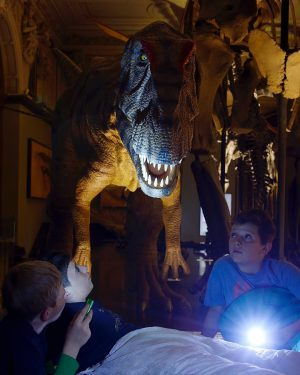 Night at the museum? That's possible at NHM Vienna 🌘🦖🦕🌔 On February 16th, children are welcome at...