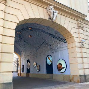 #museumsquartier #MQ #wien #vienna
