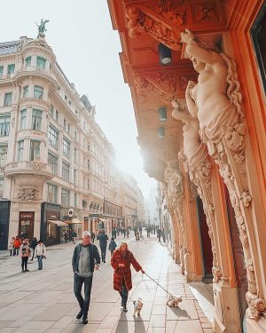 Vienna, 🇦🇹 • • I took this one a year ago and lost the raw 😢😭 •...