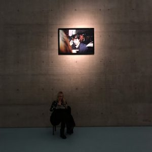 #Antarktika. Eine Ausstellung über Entfremdung @antarctica.an exhibition on alienation #kunsthallewien #vienna