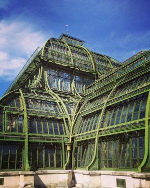 #palmenhausschönbrunn #palmenhaus #schönbrunn #wien #greenhouse #greenhousevienna #travelling_europe
