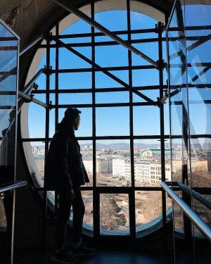 Вена - это огромный музей под открытым небом с развитой инфраструктурой. Не зря ...