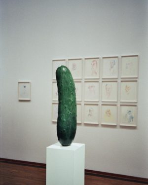 pickle rick🥒