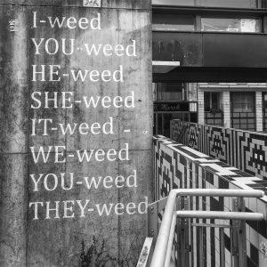 Ok I got it..We need weed