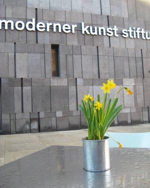 🐈 Немного венской весны вам в ленту. В этом городе удивительно гармонично сочетаются все стили и эпохи....