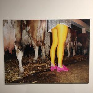 @evaszombat #ueberlebenamland @kunsthauswien_hundertwasser - von DIESER #Fotografin stammt übrigens das eyecatching #zahnspangen sujet ...