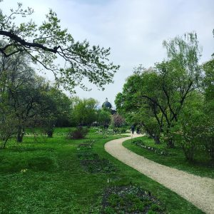 BOTANICAL GARDEN #botanischergarten #belvedere #botanischergartenwien #botanicalgardens #plantsofinstagram