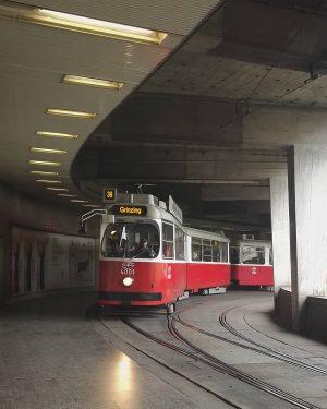 Kreisverkehr #wien#vienna#vienne #jonasreindl#schottentor #igersvienna#igersaustria #öffis#öffilove#bimliebe #bim#wienerlinien #streetcar#tram#wienliebe #meinwien#wiennurduallein #viennaclassics#stadtwien #wiendubistsoschön #vienna_austria#visitvienna #viennagoforit#wienstagram #wieneralltag#38