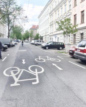 Einer der schnellsten Strecken der Welt: unsere RadfahrerInnen Rennstrecke Hasnerstraße. 🚴🏽♀️🚴🏼♂️😬 #rennstrecke #fahrrad ...
