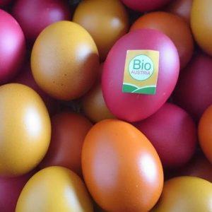 Wir wünschen euch ein schönes Osterwochenende. ☺️🐣🐰☀️🌼 #bio #ostereier #bioaustria #biologisch #nachhaltig #ostern