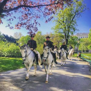 Wonderful weather ☀️ 🌸 for a hack of our stars ⭐️ 🐴 and their riders 🐎 in...